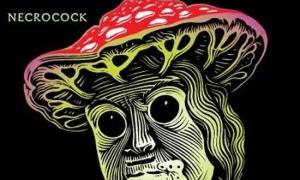 necrocock-houbarske-album