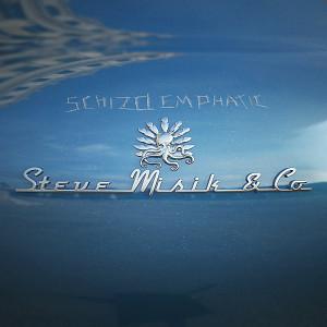 STEVE MISIK & CO.